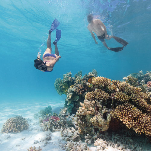 Southern Great Barrier Reef Charters